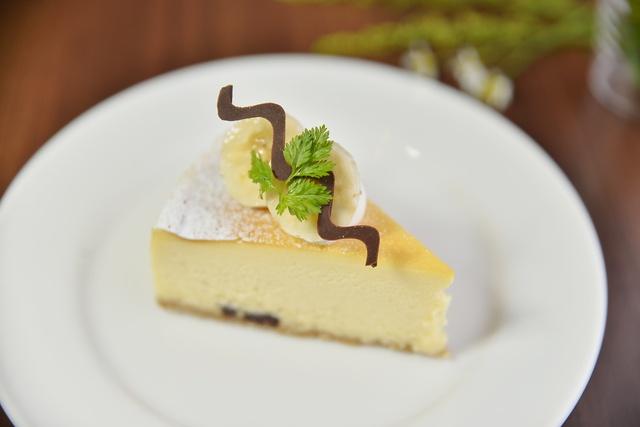 こだわりを極めたチーズケーキが大評判!札幌円山の「buono buono」