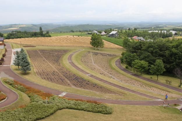 パッチワークの路:北西の丘周辺の丘