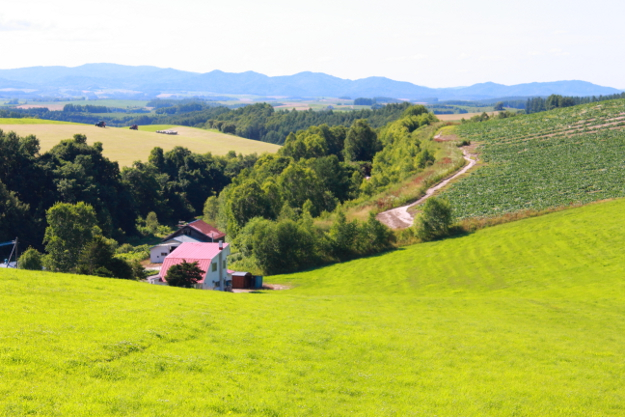 パノラマロード:千代田周辺の丘