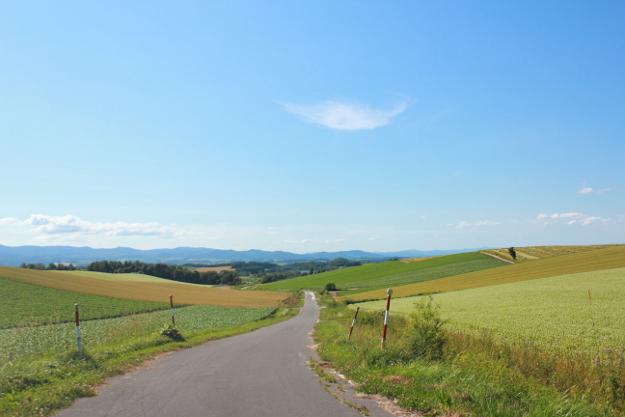 パノラマロード:常盤台周辺の丘