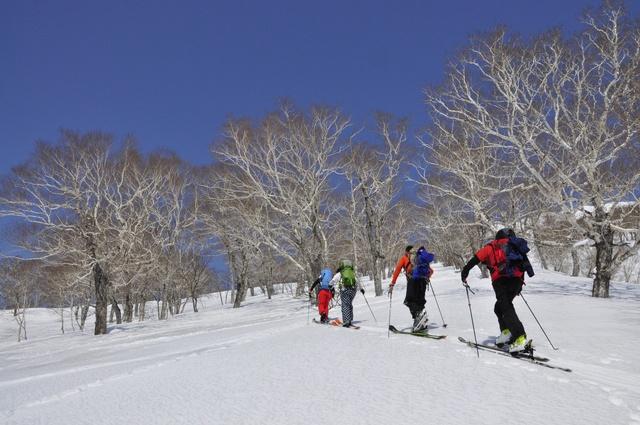 この冬こそ始めたい!初心者のためのバックカントリースキー入門