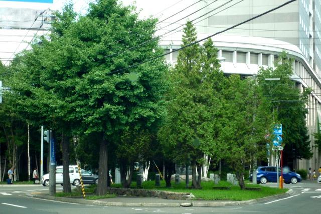 札幌で一番小さい町名はここだ!周囲わずか70mの三角州「南10西2」