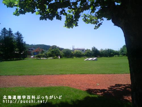 北海道の芝生は違う!?