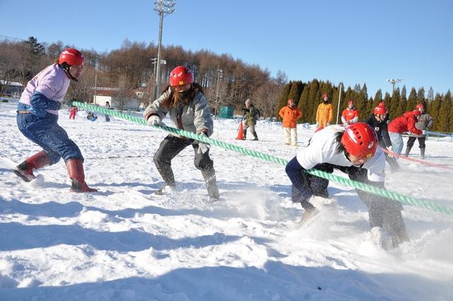 力だけでは勝てない!厚真発祥のウインタースポーツ「雪上3本引き」