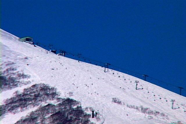ニセコの4スキー場は何がどう違う? それぞれの特徴と楽しみ方とは