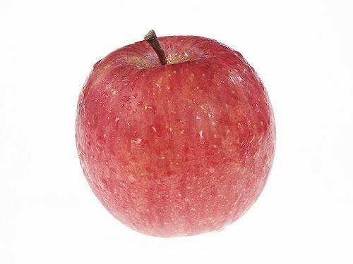 ガルトネル、果物栽培を日本に持ち込んだ人物