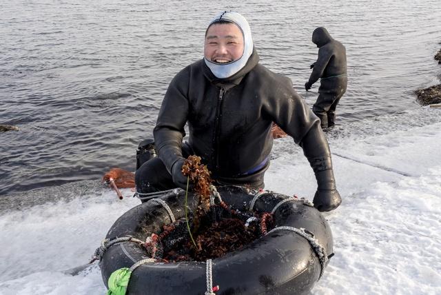 ギンナンソウって知ってる?稚内市の極寒の海で行われる漁に密着!