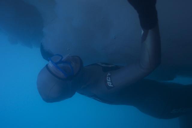 氷点下の海で素潜りに挑む!世界でも珍しい流氷フリーダイビング大会