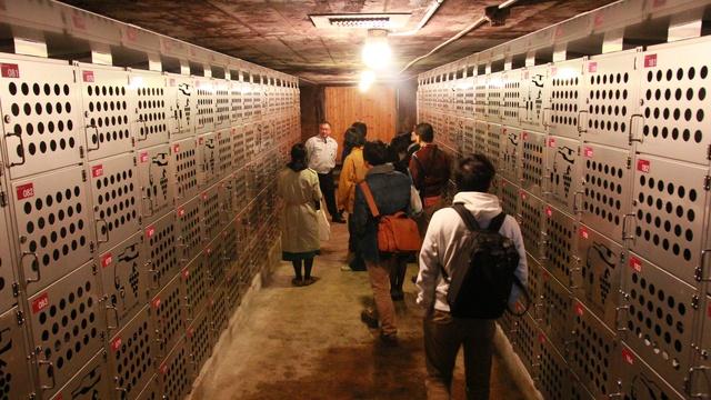 池田町産「十勝ブランデー」23年ぶり製造開始!蒸留見学ツアーも開催