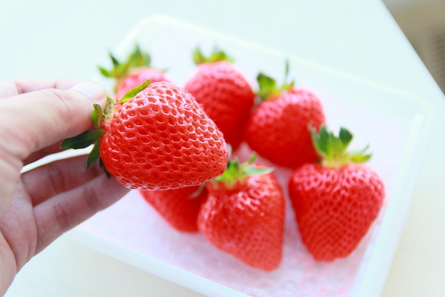 糖度16で甘い!しかも大粒!道産イチゴの新品種「夏瑞(なつみずき)」