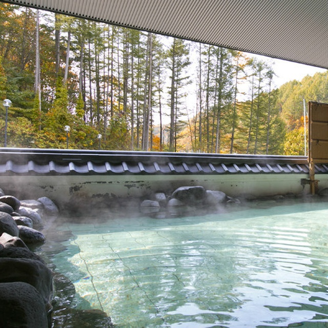 「北海道の人気日帰り温泉宿ランキング」で胆振の施設がトップ3を独占