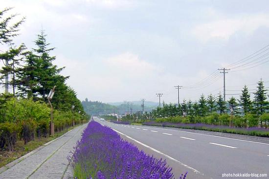 旭川南部・神楽エリアに北京ができるはずだった?
