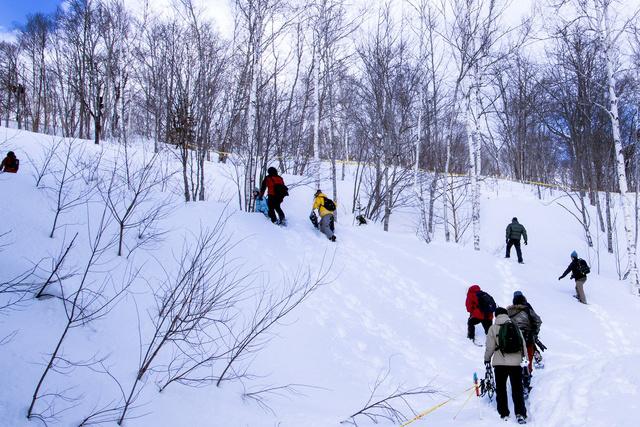 冬は入園料無料!冬の「滝野すずらん丘陵公園」を楽しむ3つの方法