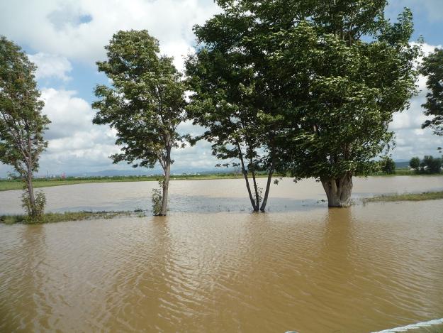 岩見沢市が酷いことに! 道路冠水、氾濫の恐れで一時避難勧告