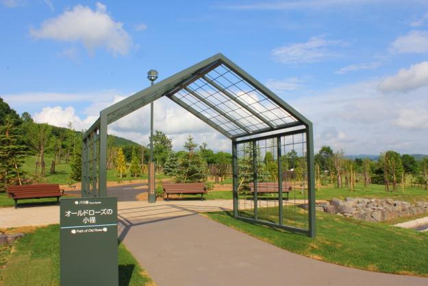 いわみざわ公園バラ園リニューアルオープン! 再整備でどこが変わった?
