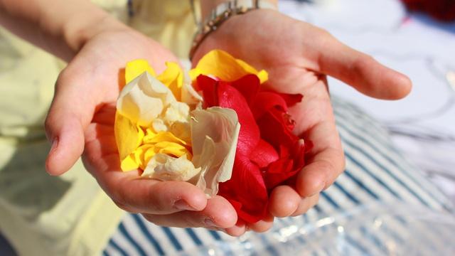 北3条広場にカラフルな花の絨毯が出現! 8万本のバラで作った大傑作
