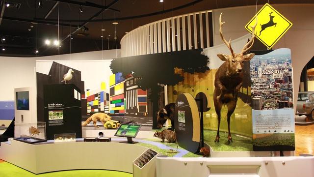 北海道博物館が4/18オープン!何が変わったのかいち早くお伝えします