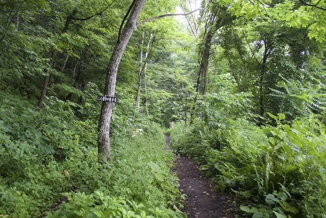 三角山に登ってスタンプを集めよう!健康登山スタンプラリーに挑戦!