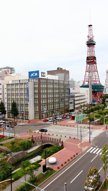 北海道で唯一!全国から注目集まる本格イヤーエステ専門店「マニス」