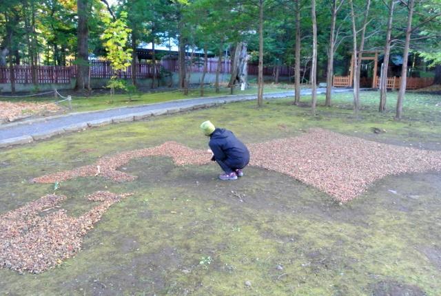 北海道神宮境内にどんぐりを並べた巨大北海道マップが出現!