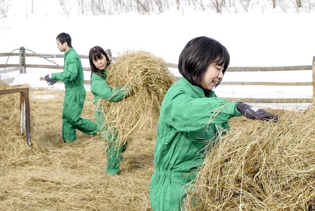 ヒツジに囲まれて幸せ!恵庭市「えこりん村」でおとなだけの飼育体験