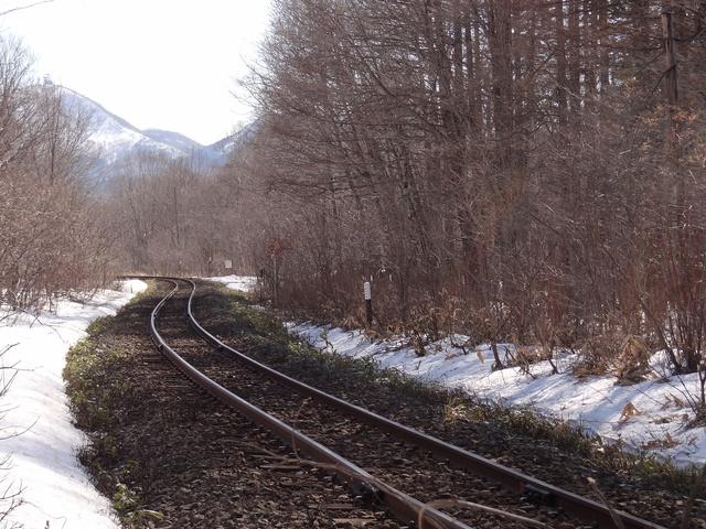 エゾシカと列車の接触事故どう防ぐ? JR北海道釧路支社に聞いた
