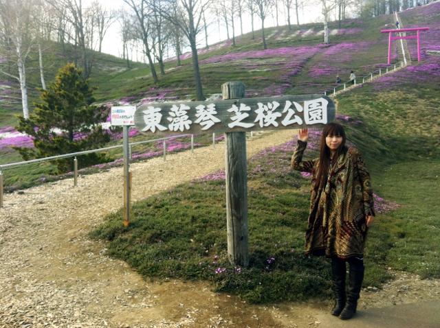 東藻琴芝桜&湧別町チューリップ!オホーツクの春の花を見に行こう!