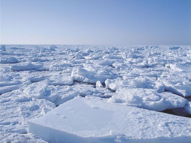知床ネイチャーオフィス松田さんが語る オホーツクの流氷のココがすごい!