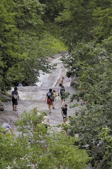斜里町役場・広木さんに聞く 知床「カムイワッカ湯の滝」の奥地とは