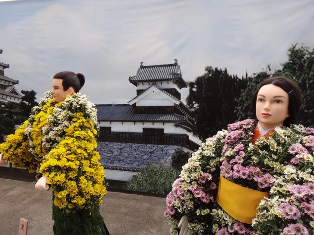 今年の菊人形展は『花燃ゆ』がテーマ! 第63回「きたみ菊まつり」