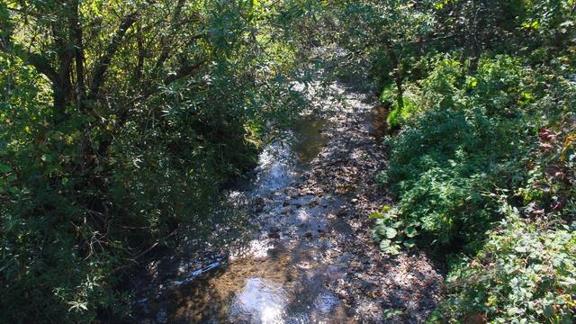 浦河には「オバケ川」という珍名河川がある!その由来とは?