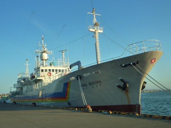 北方四島ビザなし交流の客船がネットオークションに!