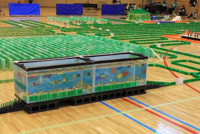 スルメのドミノも登場!53850個のドミノで「新幹線ドミノ大会」開催!