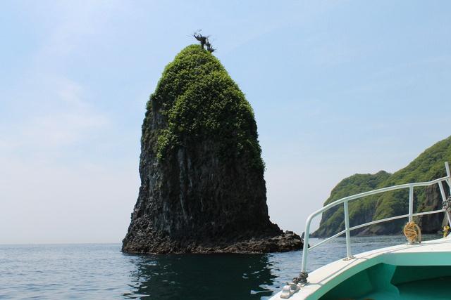 道南にも「青の洞窟」が! 道南の秘境・矢越海岸を巡る感動クルーズ!