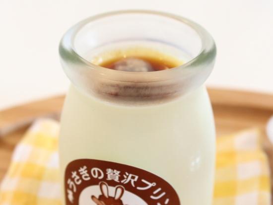 北海道産食材にこだわる「プリンカフェ北のうさぎ」