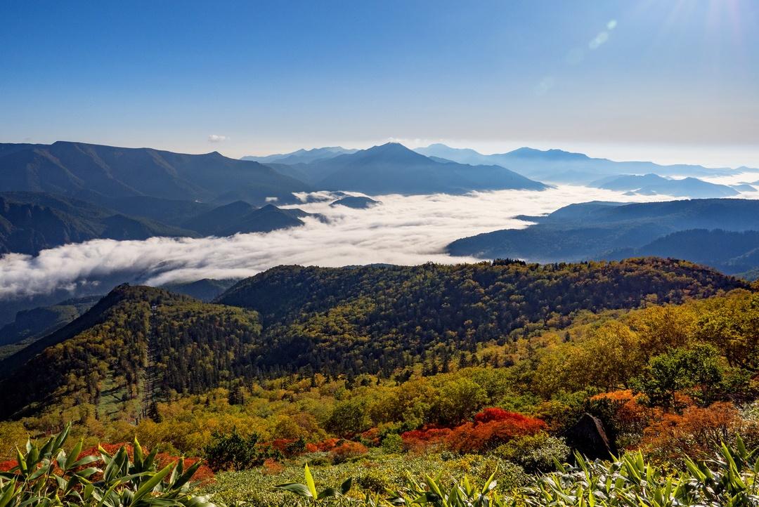 日本一早い紅葉を見に行こう!大雪山系の紅葉スポット5選