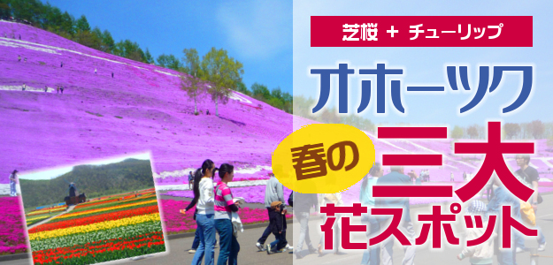 春のオホーツク「三大」花スポット巡り!