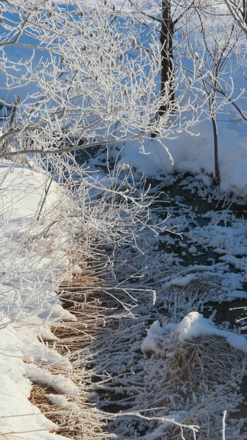 十勝川に白い龍が横たわる?! 真冬の早朝に十勝が創り出す感動風景2選