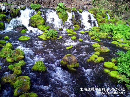 北海道三大名水とは?