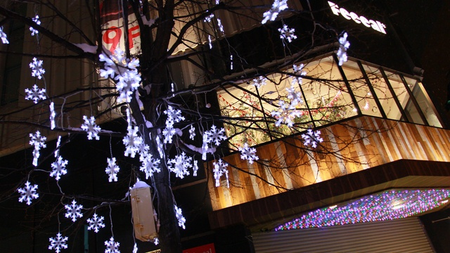 旭川が幻想的に!20万球が灯る あさひかわ街あかりイルミネーション