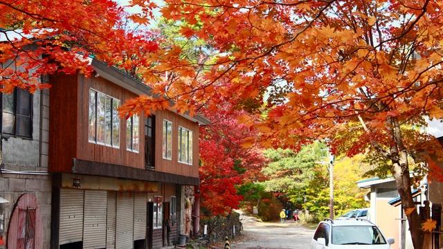 札幌の穴場的紅葉を探している人にオススメ!日本庭園の「紅桜公園」