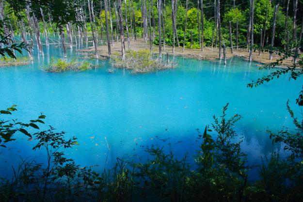 アップルが壁紙に採用!今や世界的名所となった「青い池」