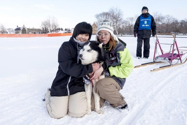 人と犬との絆が心を打つ!恵庭市の冬の風物詩「えにわ犬ぞり大会」