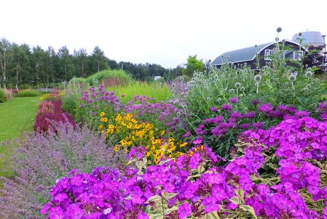 南十勝・日高山脈の麓をダイナミックに彩る!広尾町「大森ガーデン」