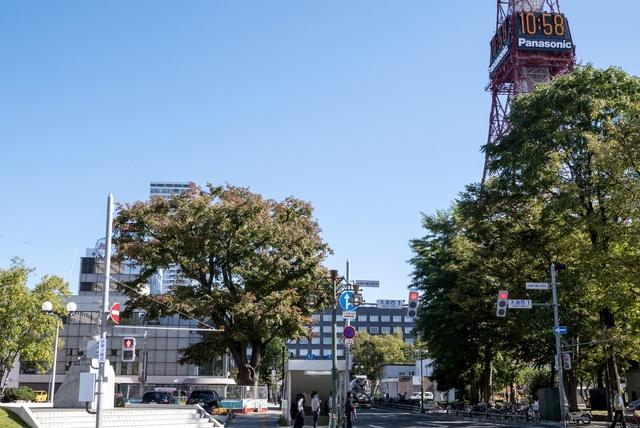 リニューアルで9割を復元!明治に建築された木造洋館「豊平館」