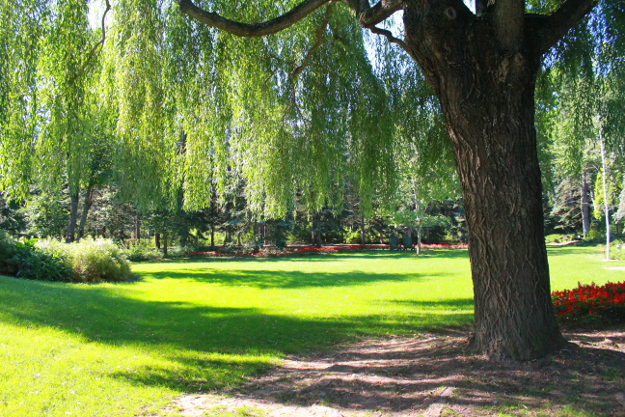まるでおとぎの国に来たかのよう! 帯広郊外の「真鍋庭園」