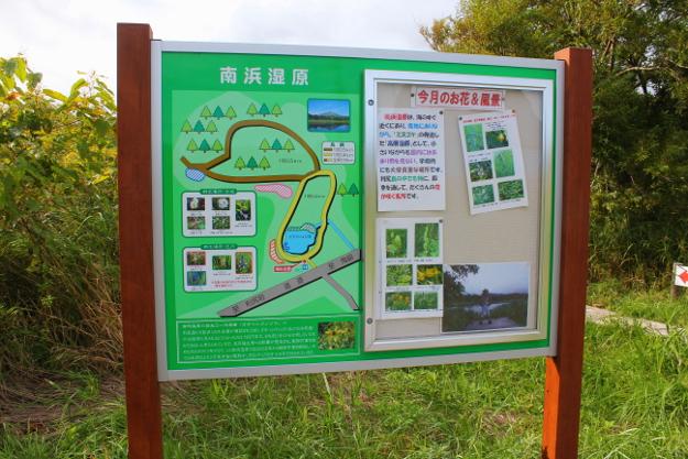 知られざる利尻の花畑「南浜湿原」は大変珍しい湿原だった?!