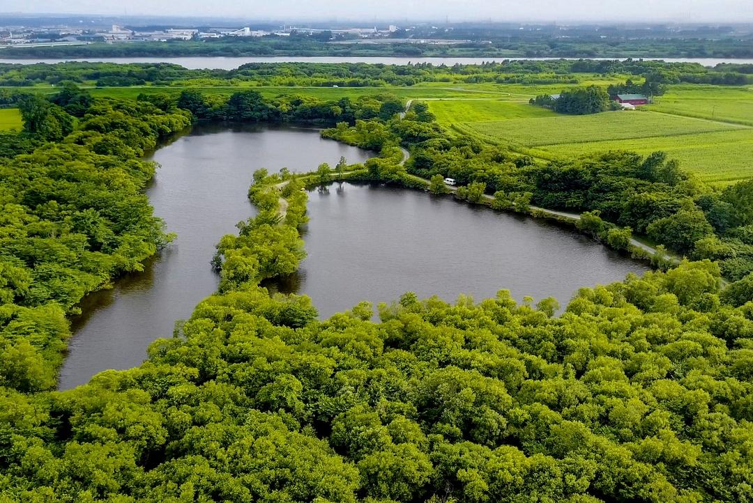 平成になってから命名された 野鳥の憩う湖―江別市「中津湖」