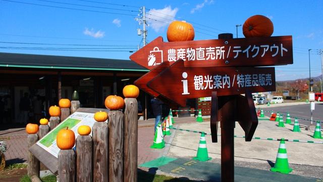 街中がカボチャだらけに!オレンジ色に染まる街・ニセコ町