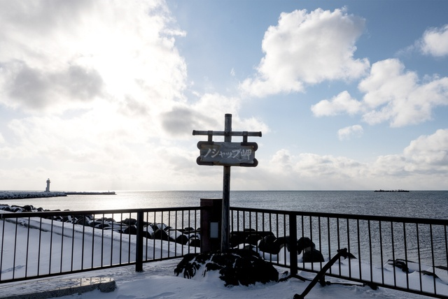 水族館も科学館も見ごたえあり!稚内市ノシャップ岬の楽しみ方
